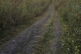 Veien opp -  Foto: Andreas Gunnberg Johansen