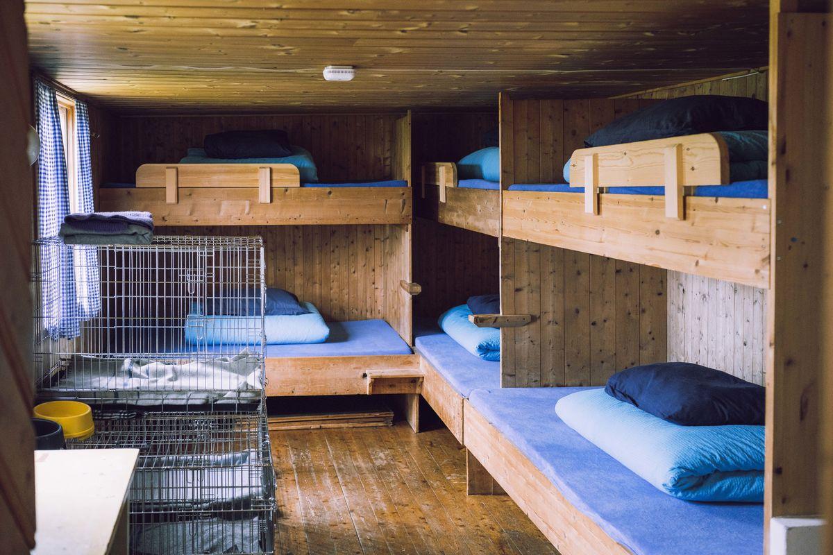Schulzhytta har egen hundeavdeling for hund og eier,.