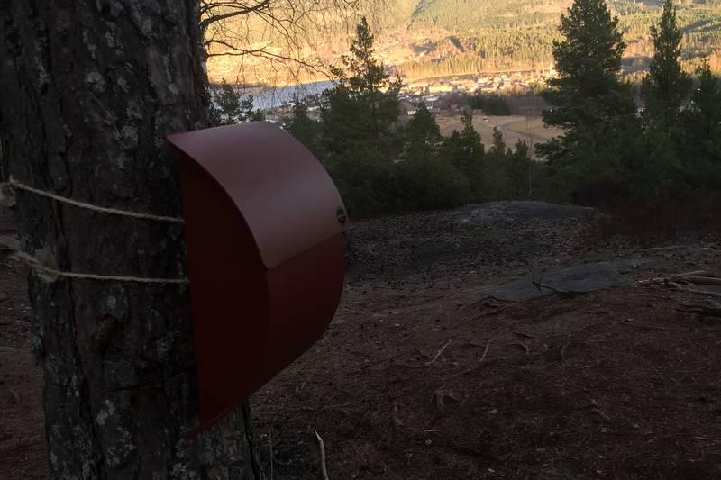 Topptur til Loftberget/Utsikten - Foto: Wenche Haugli