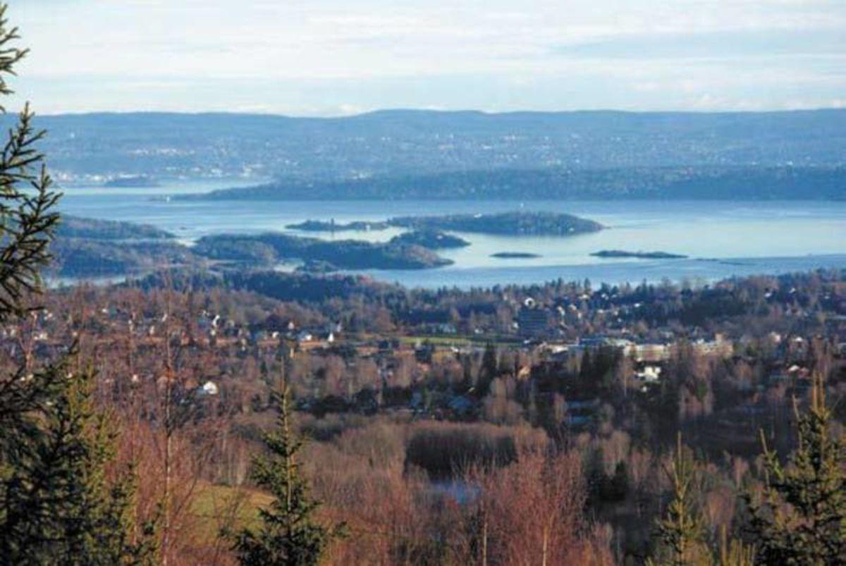 Utsikt fra Høgås