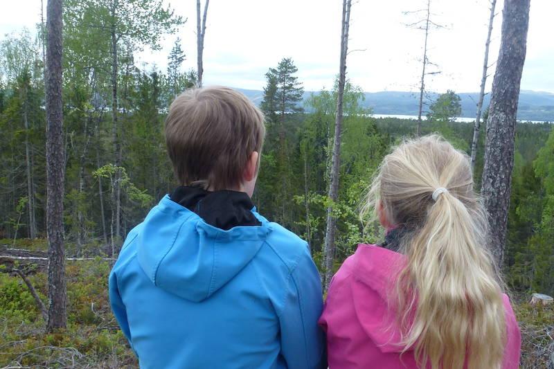 Utsikt mot Snåsavannet