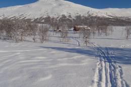 Vakkerstøylen i februar - Foto: Øyvind Hunnes