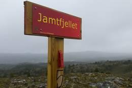 . -  Foto: Johan Eide