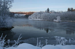 Vinter langs Nidelva -  Foto: Asbjørn Stenberg