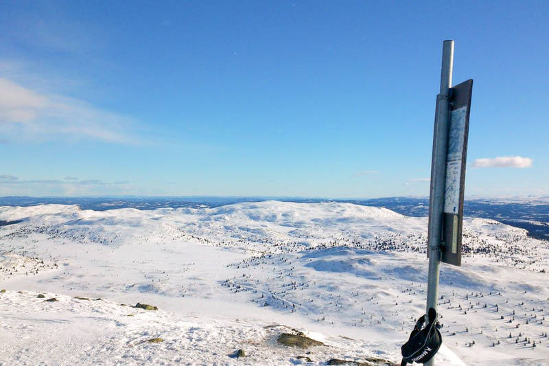 Terrenget Eventyrløypa går gjennom sett fra Nyseternatten - Foto: Kari Grete Kleivstøl