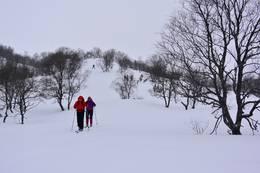 Fine nedrenn mot Skreå - Foto: Preben Falck