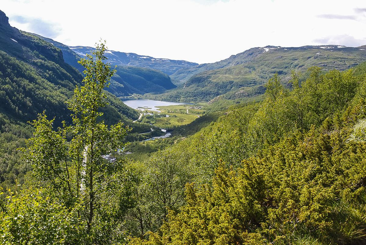 Aurlandsdalen
