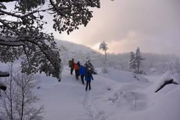 Vinterturen til Preikestolen kan by på fine naturopplevelser. - Foto: Preben Falck