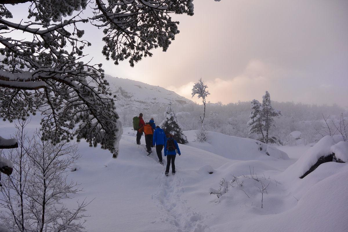 Vinterturen til Preikestolen kan by på fine naturopplevelser.