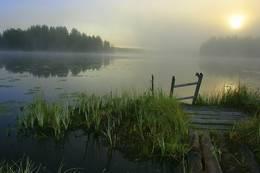 Finnskogen - Foto: Frank Klische