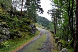 Vestlandske hovedveg fra Bakke Bru til Tronåsen - Foto: Ukjent
