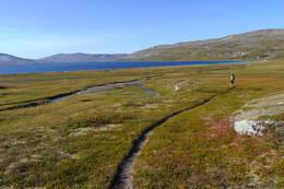 Nord for Nordre Bjøllåvatn. I bakgrunnen skimtes Bjellåvasstua -  Foto: Sara Ezeta
