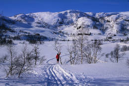 Ådneram er et populært utfartsområde om vinteren. Bilde er tatt fra hytta og du ser rett bort på Ådneram skitrekk -  Foto: Stavanger Turistforening
