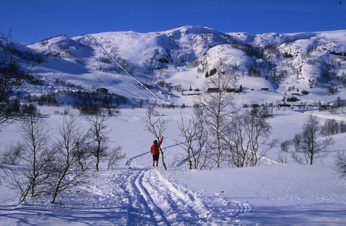 Ådneram er et populært utfartsområde om vinteren. Bilde er tatt fra hytta og du ser rett bort på Ådneram skitrekk
