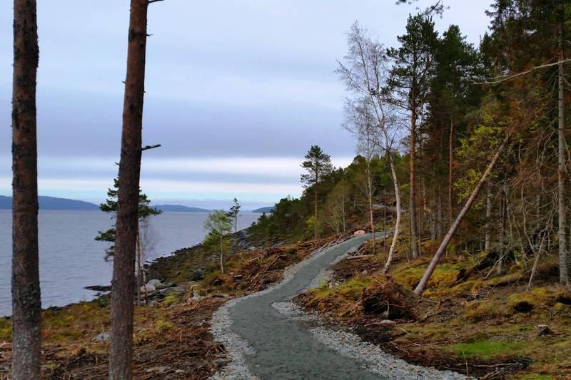 Utsikt innover Trondheimsfjorden. Man ser deler av Ytterøya, Inderøya og Skarsundbrua.