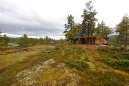 Damtjønna - Foto: Marie Brøvig Andersen