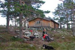 Damtjønna - Foto: Trondhjems Turistforening