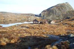 Nipebu i november - Foto: Agnar Åsnes
