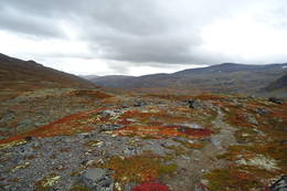 Nydelige høstfarger på Pyttbua. Flott terreng og flott hytte. 11. september 2010  - Foto: Hilde Svendsen