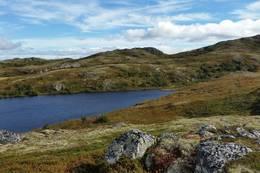 Nedre Heimtjønn - Foto: Birgit K. Friis