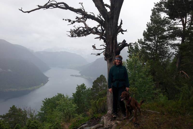 Utsikt mot Ylvisåker og Sognefjorden