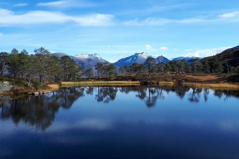 Verdens finaste plass ved Tjønnane i Agjeldsdalen.