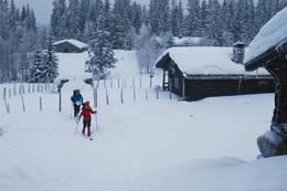 Øvre Fjellstul - Foto: Hallgrim Rogn