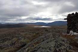 Storhøa 1391 moh. -  Foto: Oddveig Torve