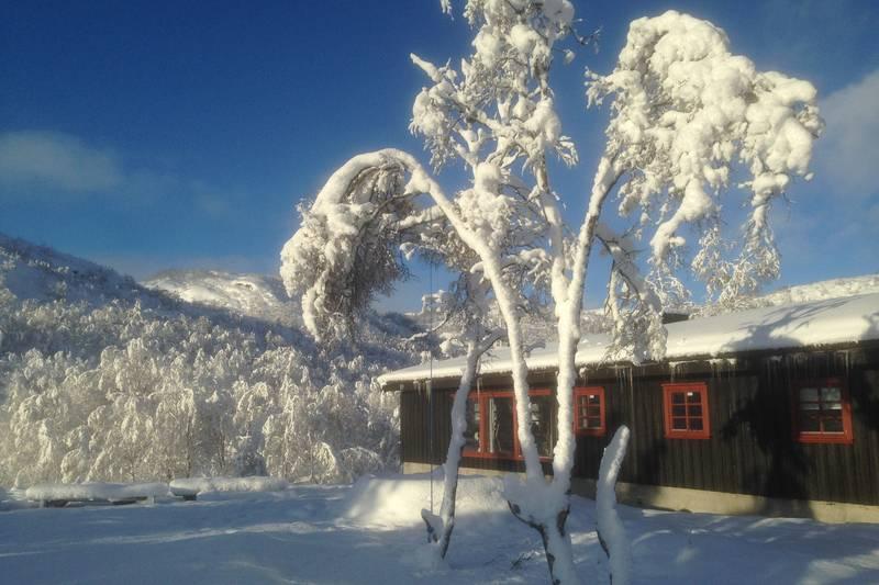 Ådneram turisthytte har flotte skiforhold og god plass for skileik utfor hytta.