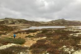 Toppen i sikte - Foto: Nesbyen  turistkontor