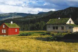 Idyllisk stølsterreng ved Bleskestadmoen - Foto: Stavanger Turistforening