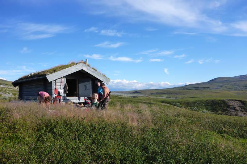 Sommerdag ved Raufjelldalskoia