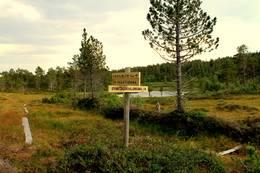 Stikrysset mot Svartbekkdalsbrunda -  Foto: Kristian Sørlund