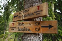 Veien videre fra Halgutusveen - Foto: Knut Einar Nordhagen, 977 80 304
