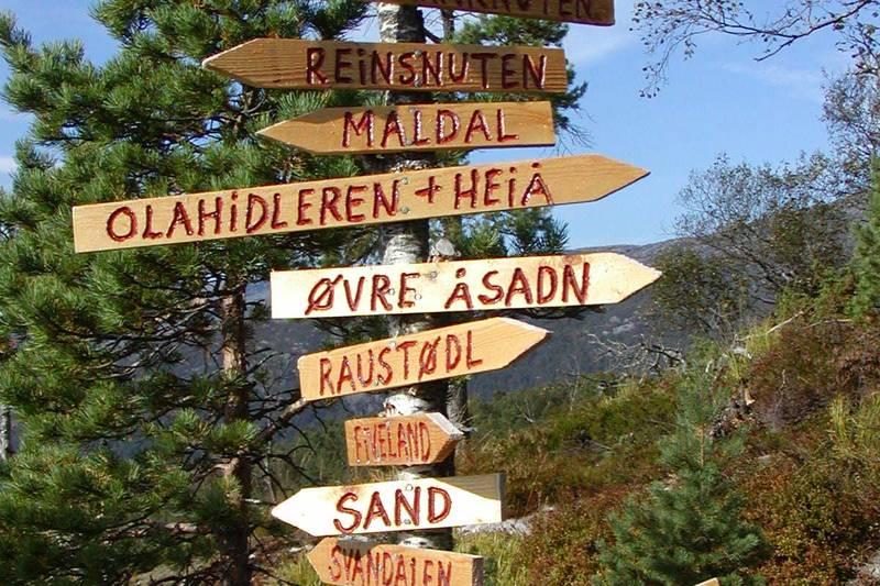 Mange alternative ruter