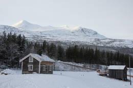 I bakgrunnen troner Ølfjellet, høyeste toppen på Saltfjellet - Foto: Hanne Olafsen