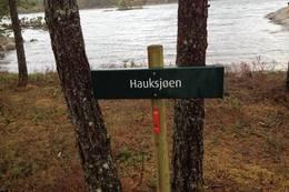 Posten - Foto: Johan Eide