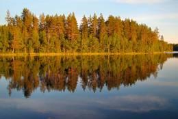 Gulsjøen - Foto: Bjørn Chr. Tørrisen