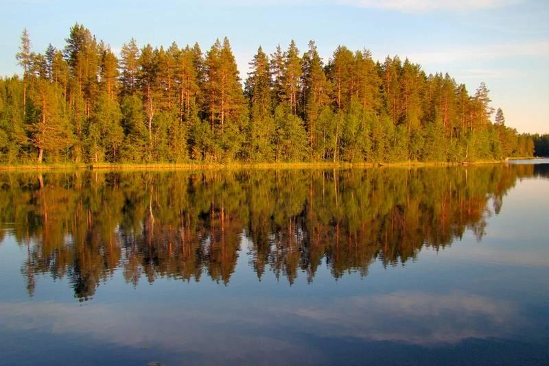 Gulsjøen