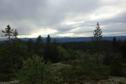 Utsikt mot Gaustadtoppen i vest. - Foto: Hilde Roland