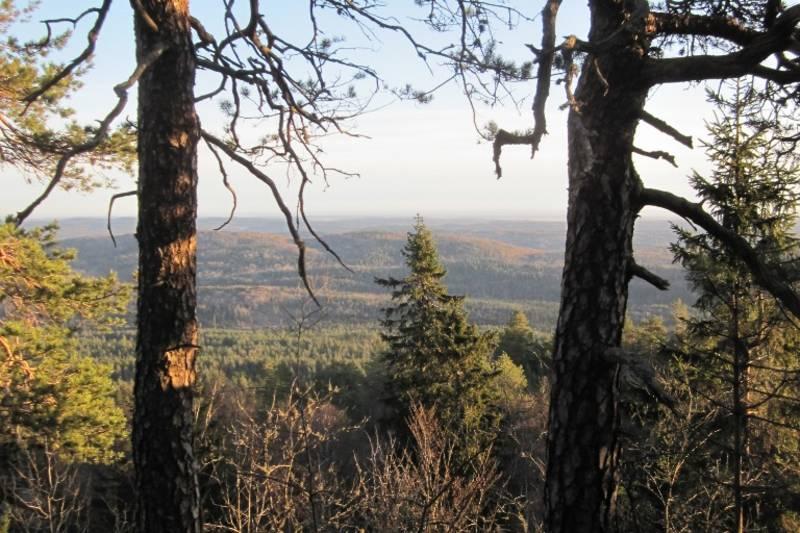 Utsikt mot nord, på nordsiden av toppen