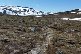 Ved Geitåvatnet, vi ser vestover mot Langrandvatnet og Langranden - Foto: Birger Blomvik