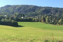 Koselige omgivelser med Skaugumsåsen i bakgrunnen -  Foto: Anders Sten Nessem