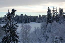 Utsikt mot Råbjørnhytta - Foto: Kristin Baune Bochud