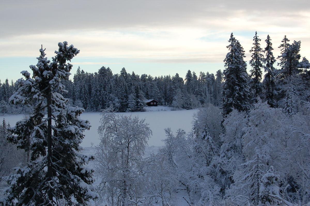 Utsikt mot Råbjørnhytta