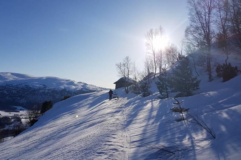 Sollia en vinterdag