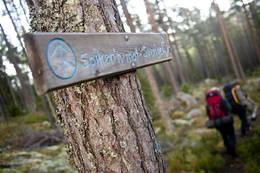 Følg Spikern mot Sverige -  Foto: Sindre Thoresen Lønnes/Den Norske Turistforening