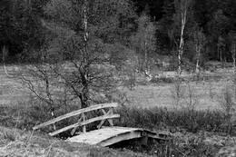 Bilde tatt ved målet -  Foto: Jo Henning Dahlø Lien