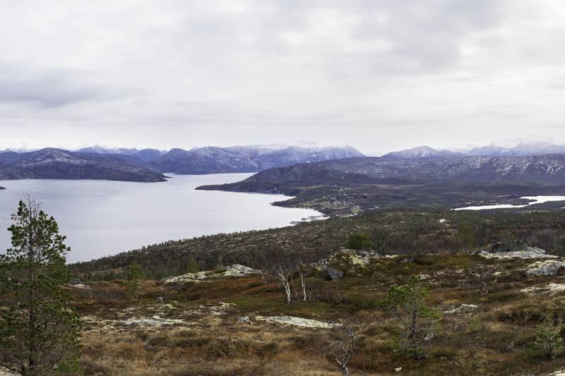 Utsikt inn Hellemofjorden