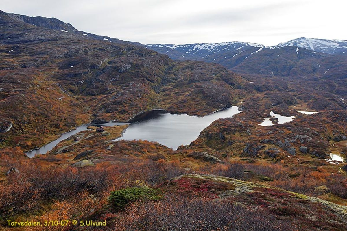 Utsikt over Torvevalen